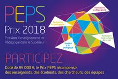 """Passion Enseignement et Pédagogie dans le Supérieur"""" 2018"""